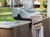 Outdoor Kitchen Appliances: Artisan
